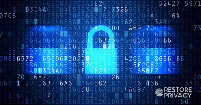 VPN logs lies